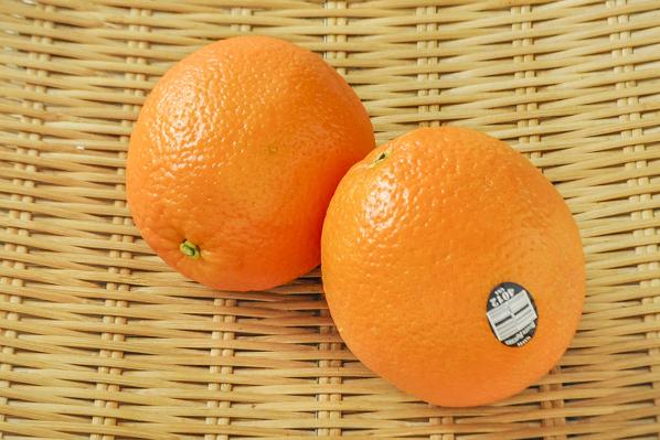 ネーブル オレンジ
