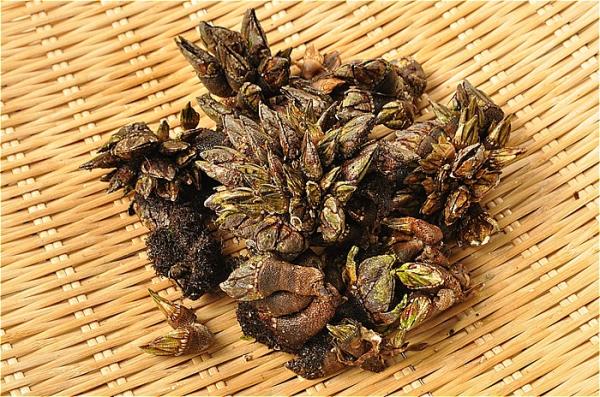 手 味噌汁 の 亀