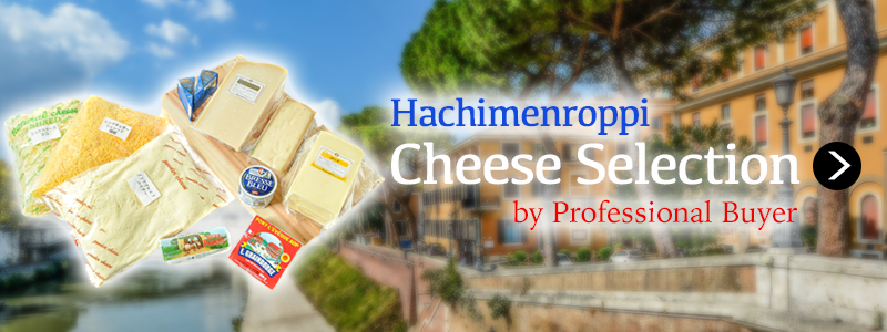 おすすめチーズ各種